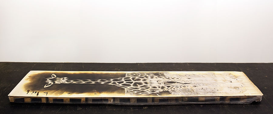 Giraffe.1b
